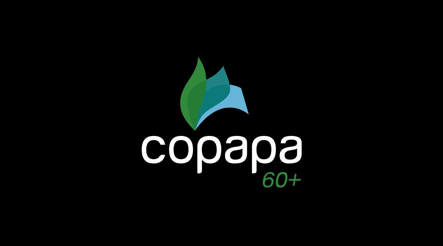 You are currently viewing COPAPA DE CARA NOVA
